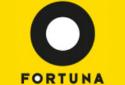 Online casíno Fortuna Casino Vegas